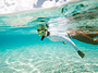 Morning Glory Snorkeling � Half Day